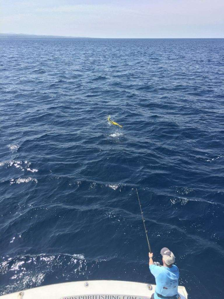 Talking Fish Tamarindo 3/4 day charter dorado