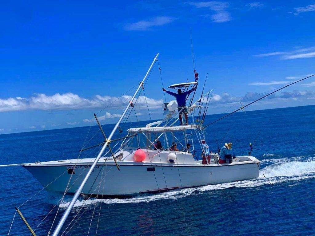 Capullo Tamarindo half day charter