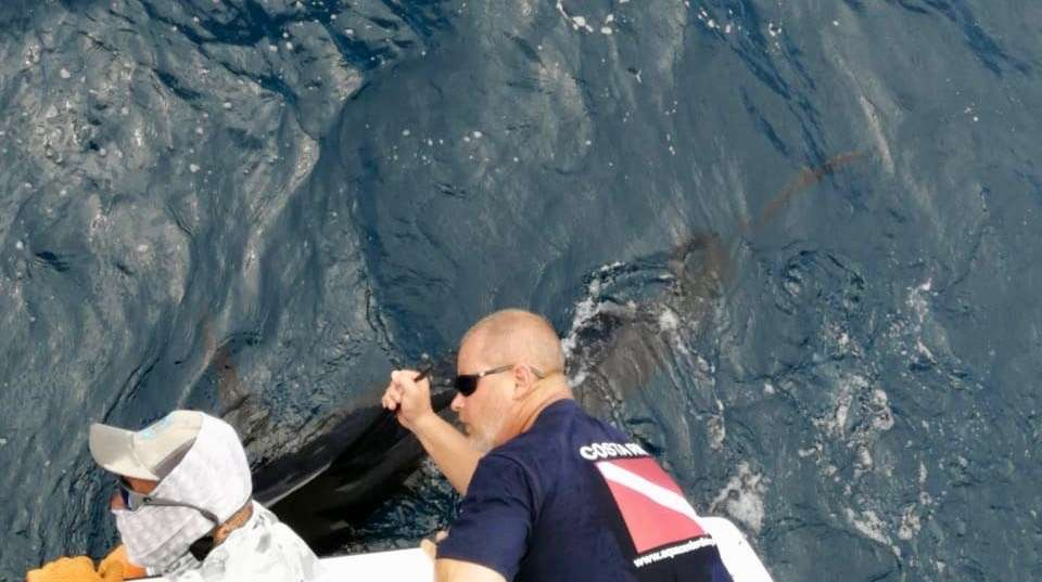 Outcast Tamarindo full day charter cubera marlin