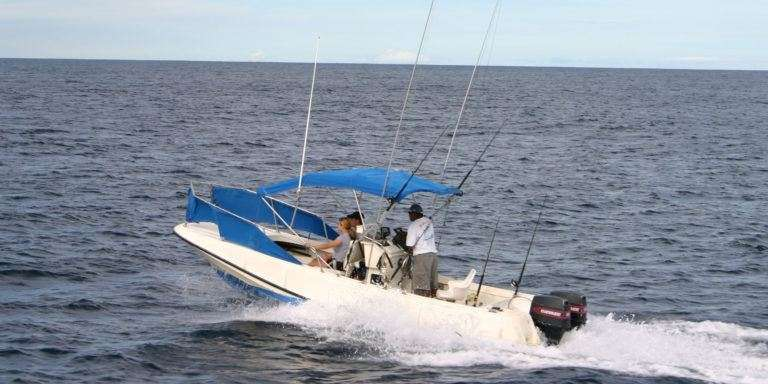 Rainbow Runner 22' Boston Whaler